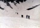2002 Thalo Pass